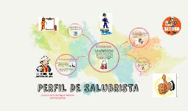 PERFIL DE SALUBRISTA