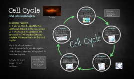 Copy of Cell Cycle