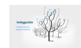Copy of indagación