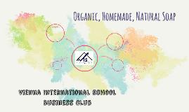Vienna International School Business Club