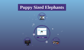 Puppy Sized Elephants