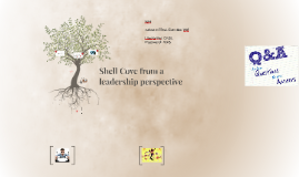 Shell Cove from a leadership perspective