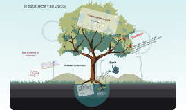 PERSEPCION Y LA TOMA DE DECISIONES INDIVIDUAL