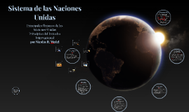 Principales Organos de la ONU y Principios del Derecho Internacional