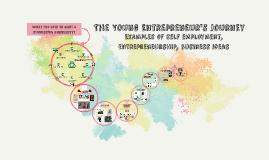Examples of self emloyement, entrepreneurship, buisness idea