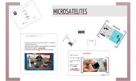 Microsatelites