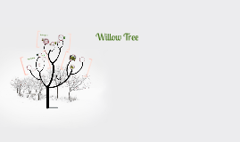 Copy of Willow Tree