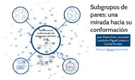 Conformación de Subgrupos de Pares