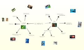 Interdependence of Organisms:Sanju G.&Chris L.