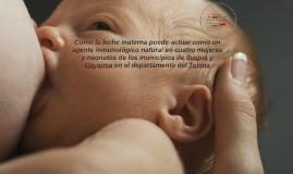 Cómo la leche materna puede actuar como un agente inmunológi