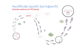 Anesthesia Agents and Adjuncts
