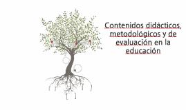 Contenidos didáctivos, metodológicos y de evaluación en la e