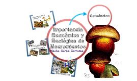 Importancia Económica y Ecológica de Macromicetos