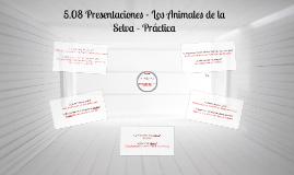 Copy of 5.08 Orientaciones