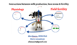 Interactions between milk production, heat stress, and ferti
