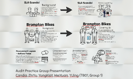 Audit Practice Group Presentation