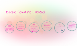 Disease Resistant Livestock