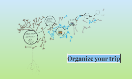 Organize your trip