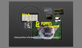 Prezi and Puppies