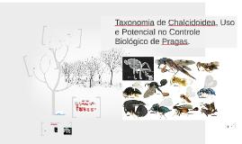 Copy of Taxonomia de Chalcidoidea, uso e potencial no Controle Bioló