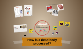 How is a dead body processed?
