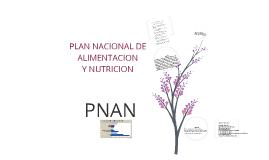 PLAN NACIONAL DE ALIMENTACION Y NUTRICION.