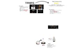 2014 web based portfolio