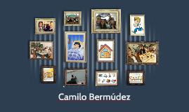 Camilo Bermúdez