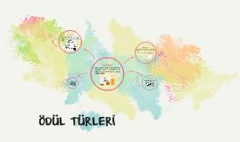 Copy of ÖDÜL TÜRLERİ