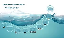 Saltwater Environment