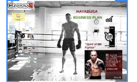 HAYABUSA Boxing and MMA