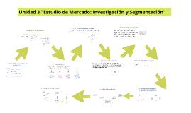 """Unidad 3 """"Estudio de Mercado: Investigación y Segmentación"""""""