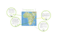 FLVS World History 3.02H Big picture Africa