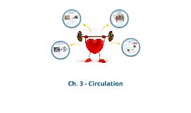 Ch.3 Circulation
