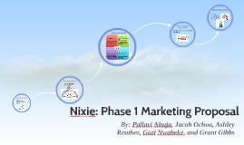 Nixie: Phase 1 Marketing Proposal