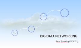 BIG DATA NETWORKING