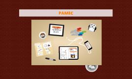 PAMEC - CLINICA NORTE