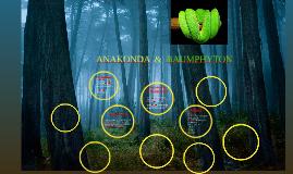 Copy of ANAKONDA  &  BAUMPHYTON