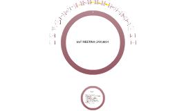 SST MEETING JAN 2014