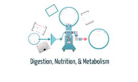Digestion, Nutrition, & Metabolism