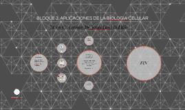 BLOQUE 3. APLICACIONES DE LA BIOLOGIA CELULAR