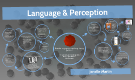 Visual Perceptions: Language & Perception
