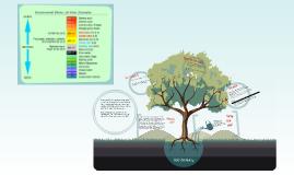 Soil Chemistry Tests - Fox River - 6 November 2012