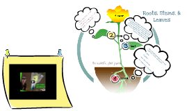 Root, Stem, & Leaf