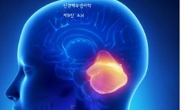 신경해부생리학 9장 소뇌