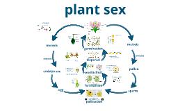 Bio Plant Sex CP
