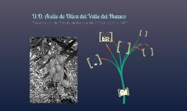 DO Aceite Oliva del Valle del Huasco
