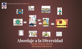 Abordaje a la Diversidad
