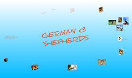 German Shepherds <3