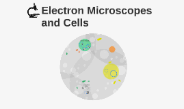 Electron Microscopes and Cells